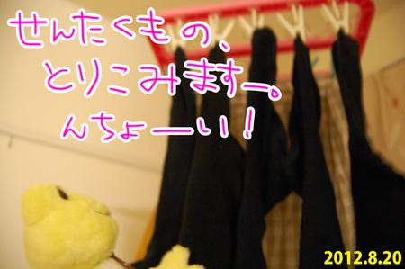 20120820_02.jpg