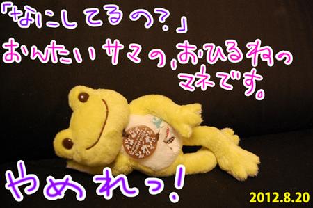 20120820_04.jpg